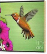 Rufus Hummingbird Wood Print