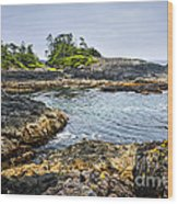 Rugged Coast Of Pacific Ocean On Vancouver Island Wood Print