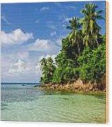 Rugged Lush Green Coastline Wood Print