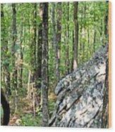 Rugged Terrain Of Boulder Field Wood Print