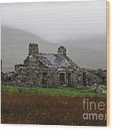 Ruined Cottage Snowdonia Wood Print