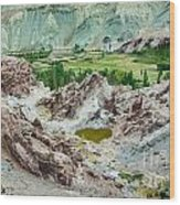 Ruins At Basgo Monastery Ladakh India Wood Print