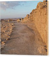 Ruins Of A Fort, Masada, Israel Wood Print