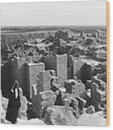 Ruins Of Babylon Wood Print