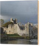 Ruins Of Desmond Castle Wood Print