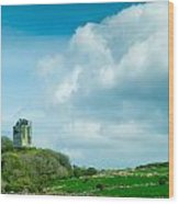 Ruins Of Irish Castle Wood Print