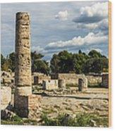 Ruins Of Paestum Wood Print
