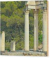 Ruins Of Roman Columns In Glanum  Wood Print