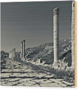 Ruins Of Roman-era Columns Wood Print