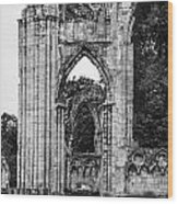 Ruins Of St. Mary's Abbey Wood Print