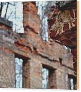 Ruins Of Sweetwater Manufacturing Company Wood Print