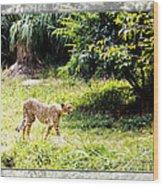 Run Cheetah Run 0 To 60 In 3 Seconds Wood Print