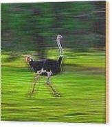 Run Ostrich Wood Print