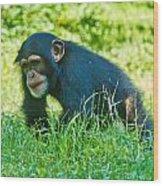Running Chimp Wood Print
