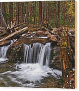 Running Down Antero Wood Print