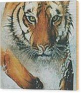 Running Tiger Wood Print