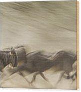 Running Wildebeest I Wood Print