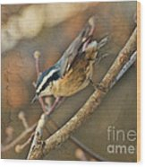 Runway Clear For Takeoff   Redbreasted Nuthatch Wood Print
