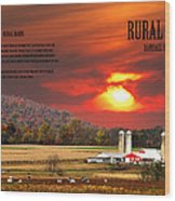 Rural Barns By Randall Branham Wood Print