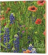 Rural Color Wood Print