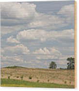 Rural Field Landscape In Maryland Wood Print