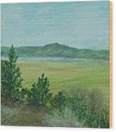 Rural Landscape Art Original Colorful Oil Painting Swan Lake Oregon  Wood Print