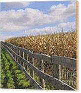 Rural Landscape With Fence Wood Print