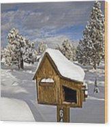 Rural Mailbox Wood Print