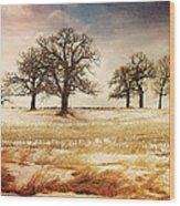 Rural Oaks Wood Print