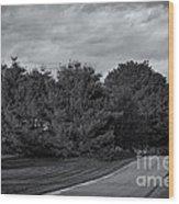 Rural Road 52 Wood Print