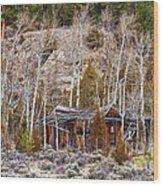 Rural Rustic Rundown Rocky Mountain Cabin Wood Print