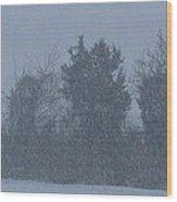 Rural Snowfall Wood Print