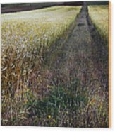 Ruralscape #1 Wood Print