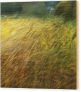 Ruralscape #8. Field And Wind Wood Print