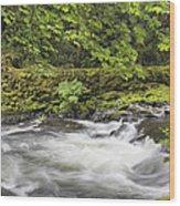 Rushing Water At Cedar Creek Washington State Wood Print
