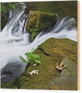 Rushing Water At Whatcom Falls Park Wood Print