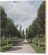 Russian Garden - St. Petersburg - Russia Wood Print