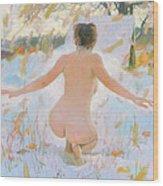 Russian Sauna IIi  Wood Print