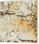 Rust And Peeling Paint Wood Print