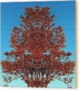 Rust And Sky 2 - Abstract Art Photo Wood Print