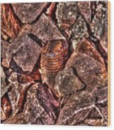 Rusted Bolt In The Rocks Wood Print