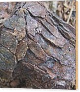 Rusted Rust Wood Print by Mary Deal