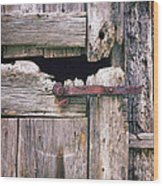 Rustic Barn Door Wood Print
