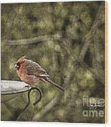Rustic Cardinal Wood Print