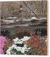 Rustic Fall Wood Print