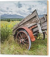 Rustic Landscapes - Wagon And Wildflowers Wood Print