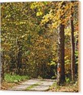 Rustic Road Wood Print