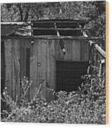 Rustic Shed 2 Wood Print