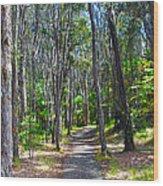 Rustic Trail Wood Print