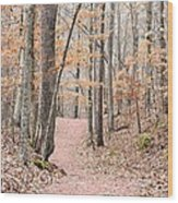Rustic Trails In January 2013 Wood Print